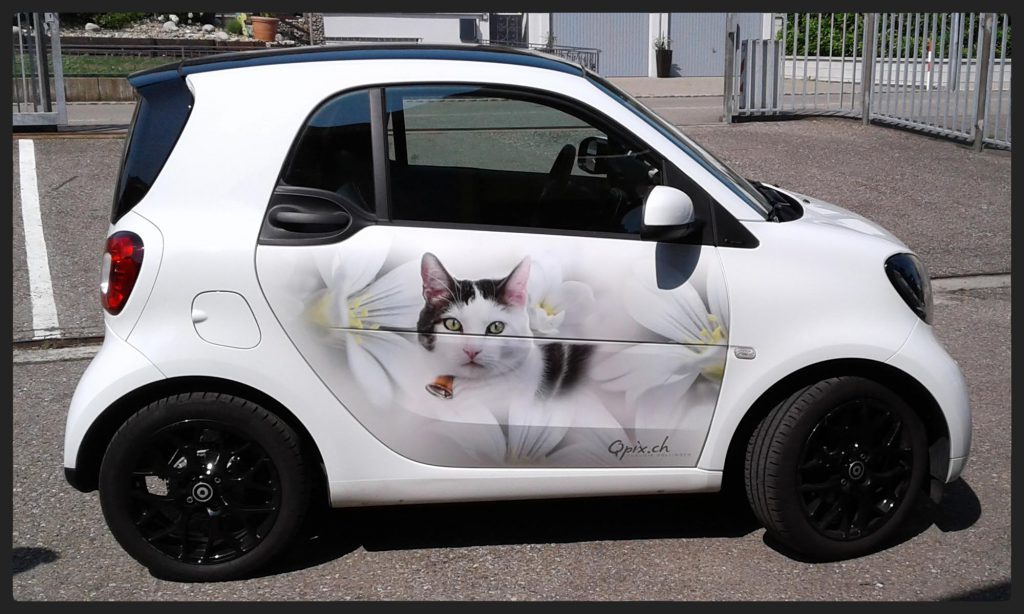 Beklebte Smart-Autotüre mit Fotofolie by Qpix